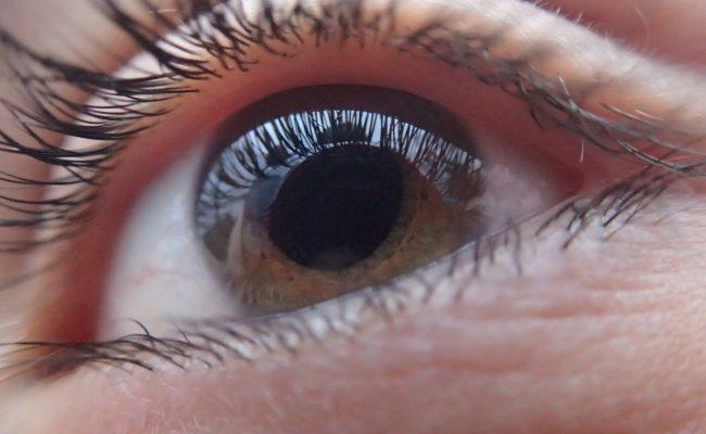 A Brown Eye